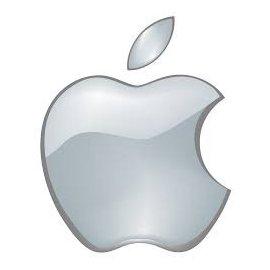 Fundas Apple iPad